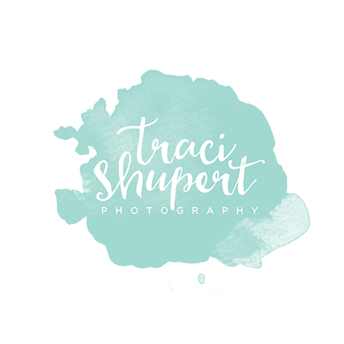 Traci Shupert Photography LLC :: Goshen, Elkhart, Mishawaka, South Bend, Michiana Newborn & Child Photographer logo